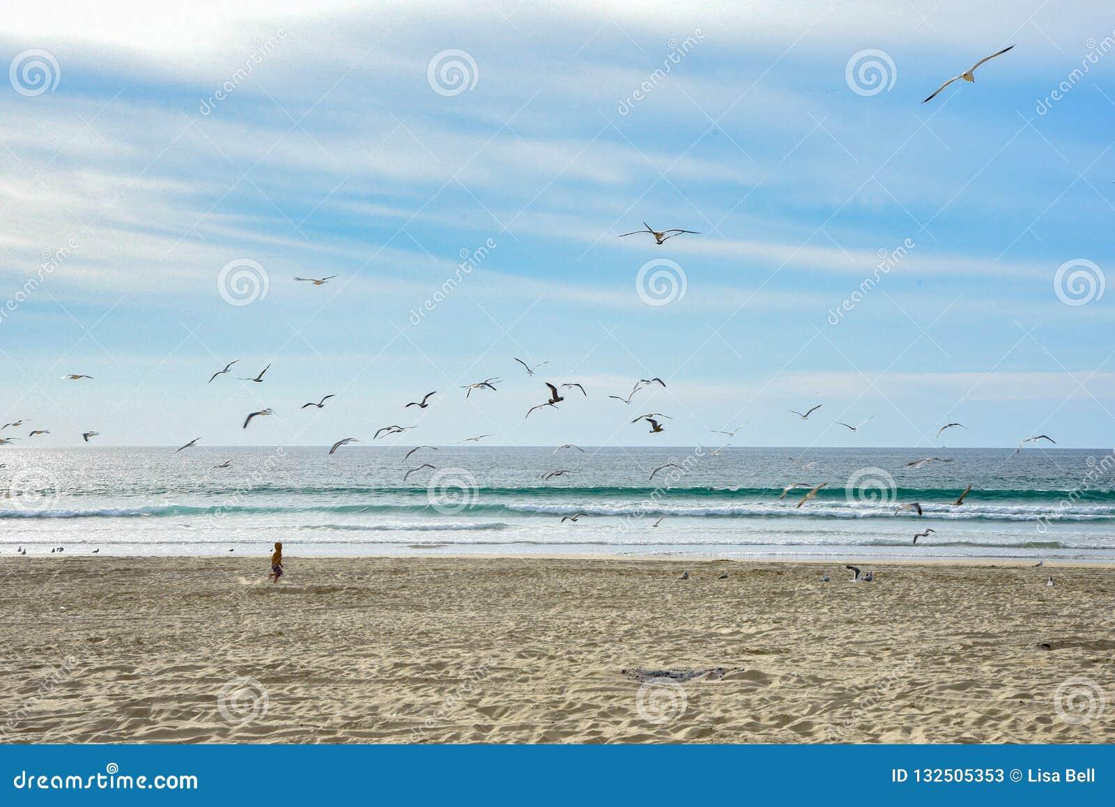 Молодые бега мальчика на пляже