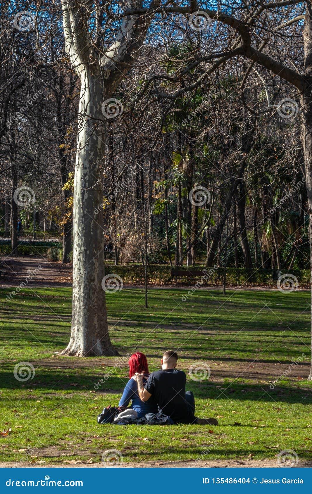 Молодые пары в любов на траве в на открытом воздухе парке