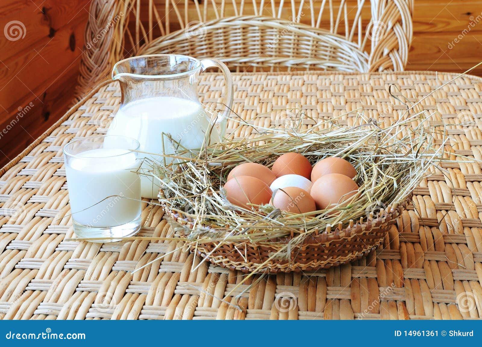 молоко яичек