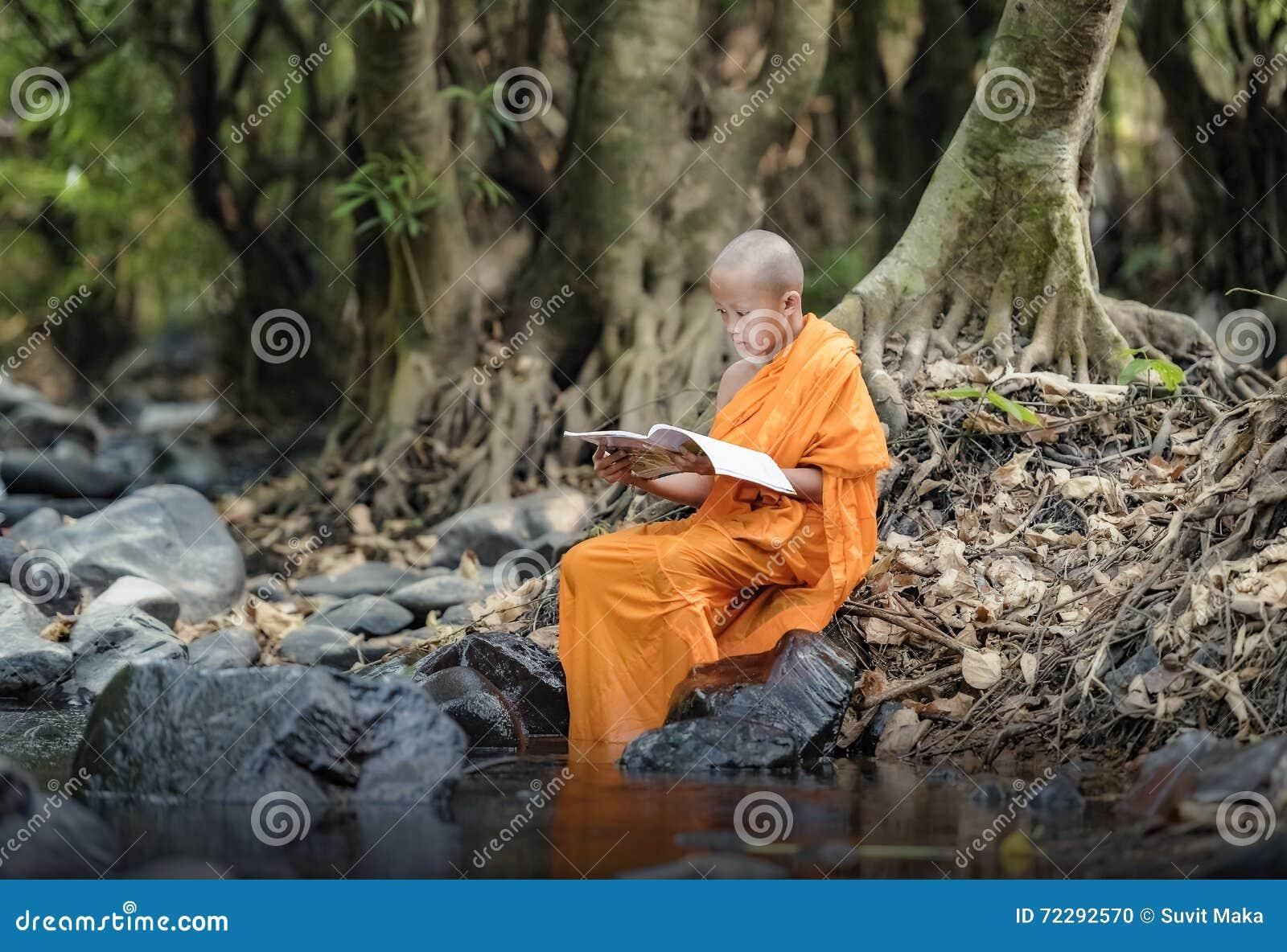 Download Монах послушника стоковое фото. изображение насчитывающей культурно - 72292570