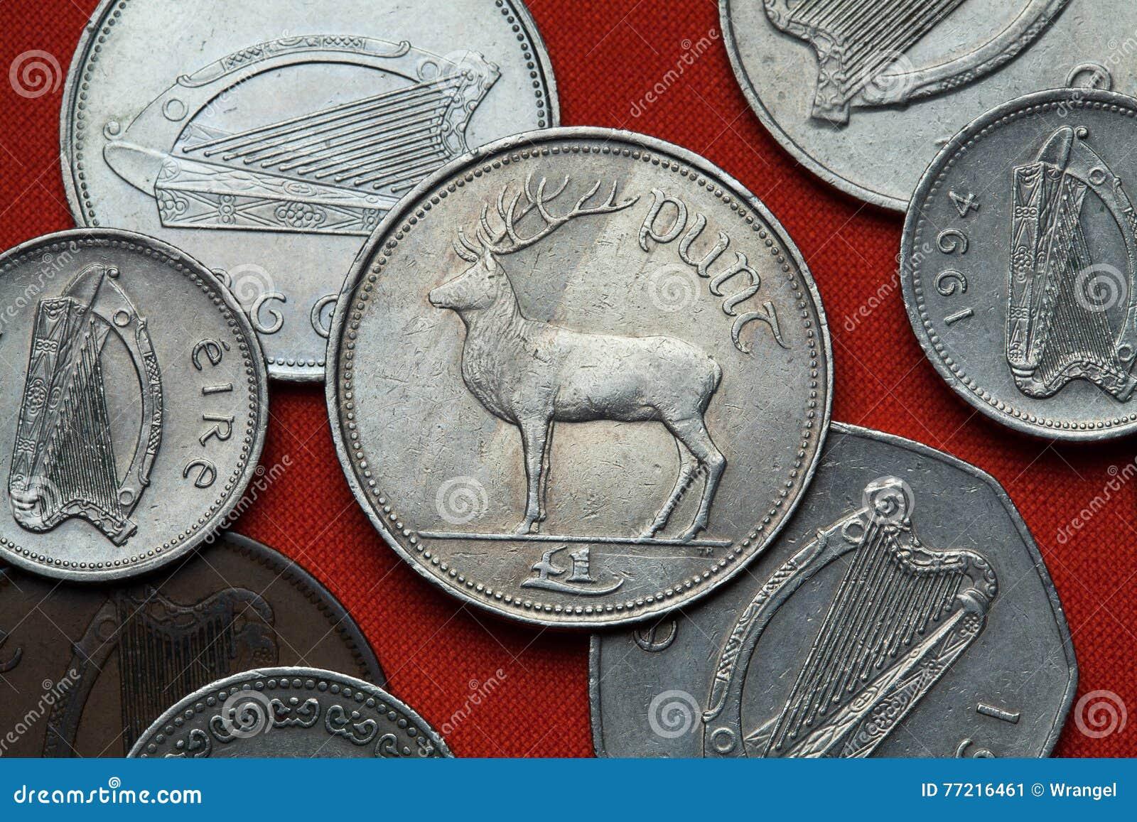 Монетки Ирландии Красные олени & x28; Elaphus& x29 Cervus;