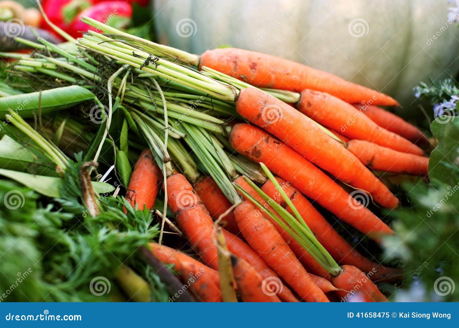 моркови пука свежие