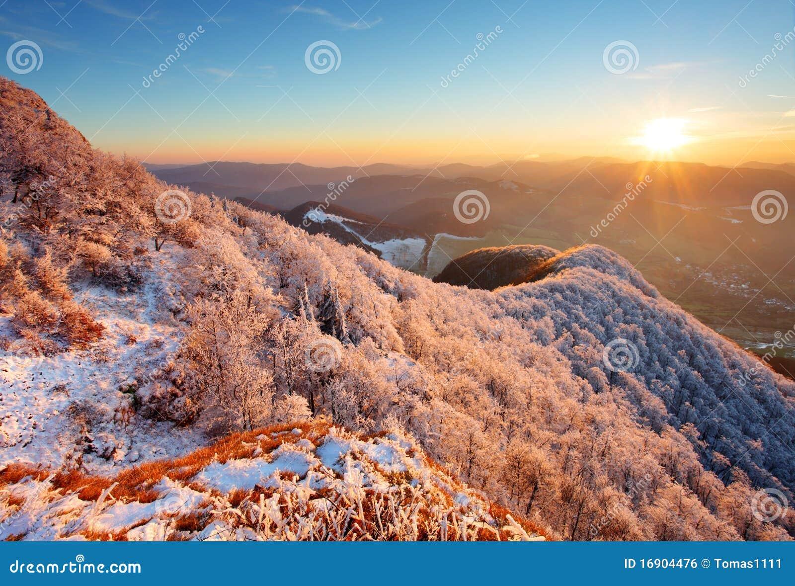 морозный заход солнца ландшафта hoarfrost