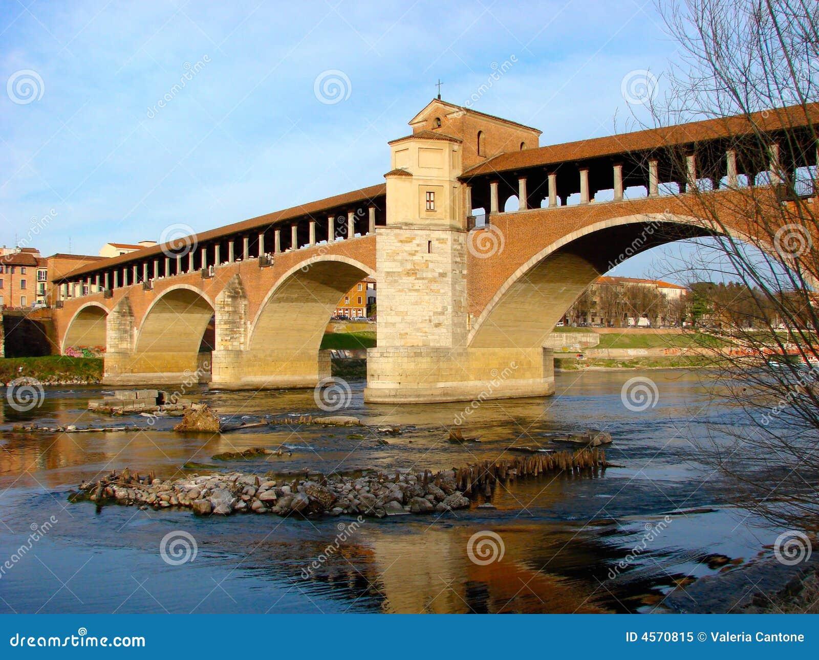мост старый pavia