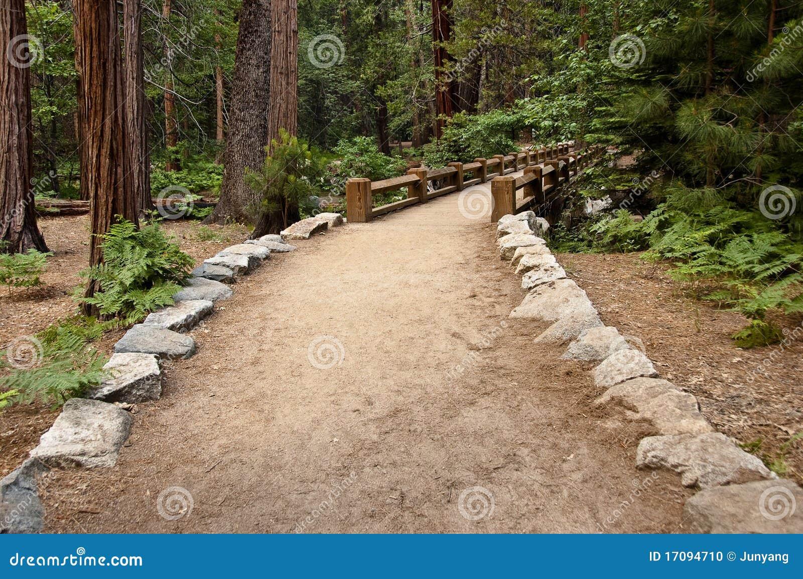 мост hiking для того чтобы отстать деревянное