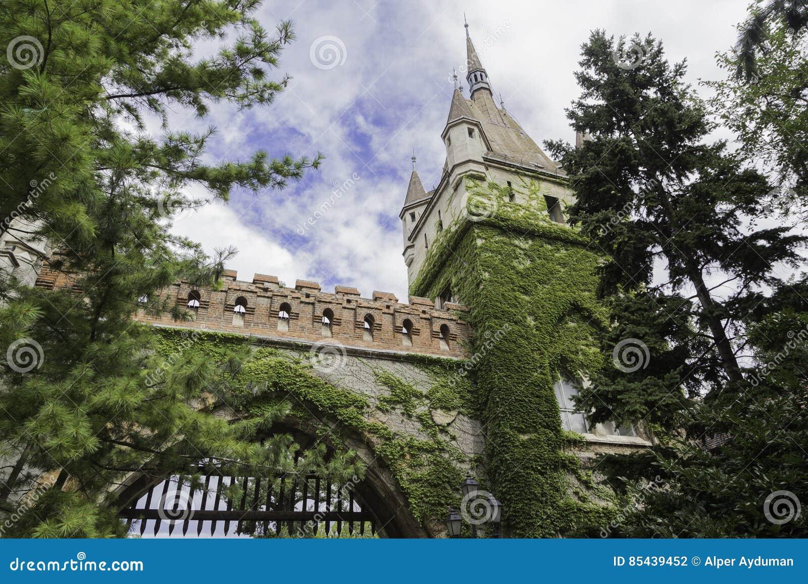 Мох покрыл стены замка с голубым небом в Будапеште, Венгрии