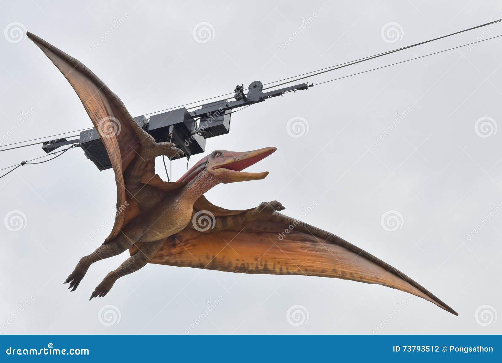 Модель pteranodon
