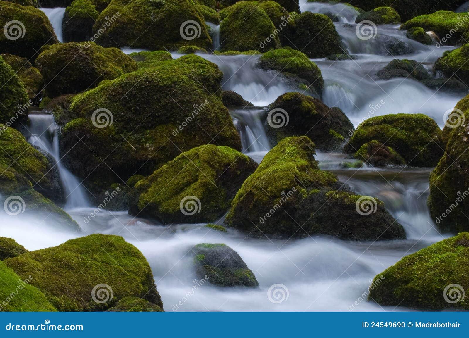 мшистая гора трясет поток