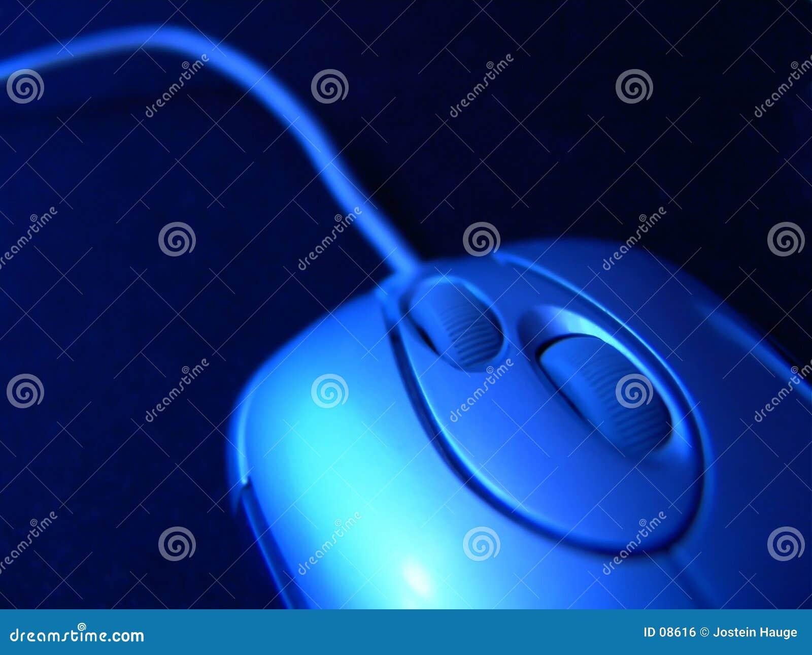 мышь компьютера
