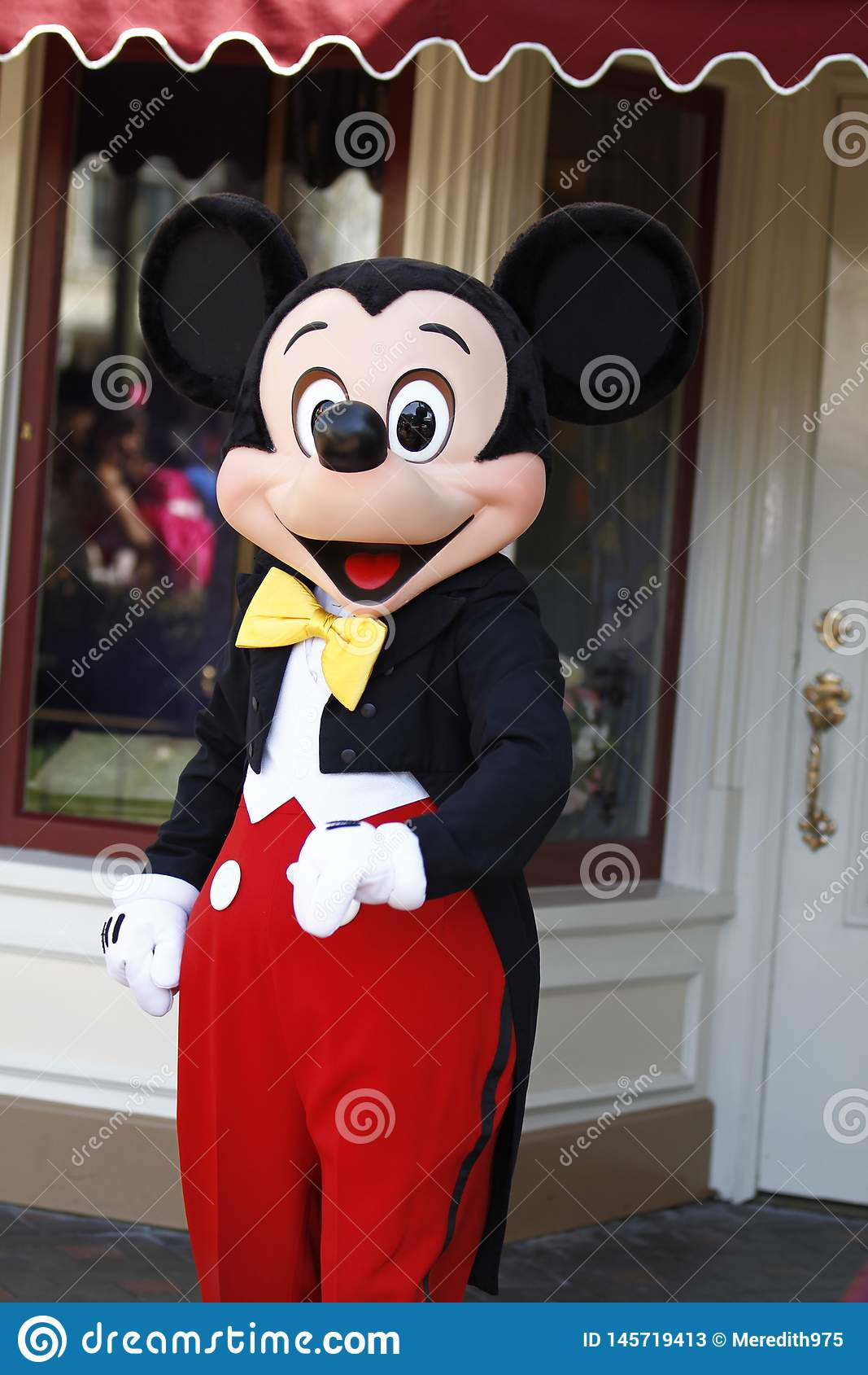 Мышь Mickey на Диснейленде