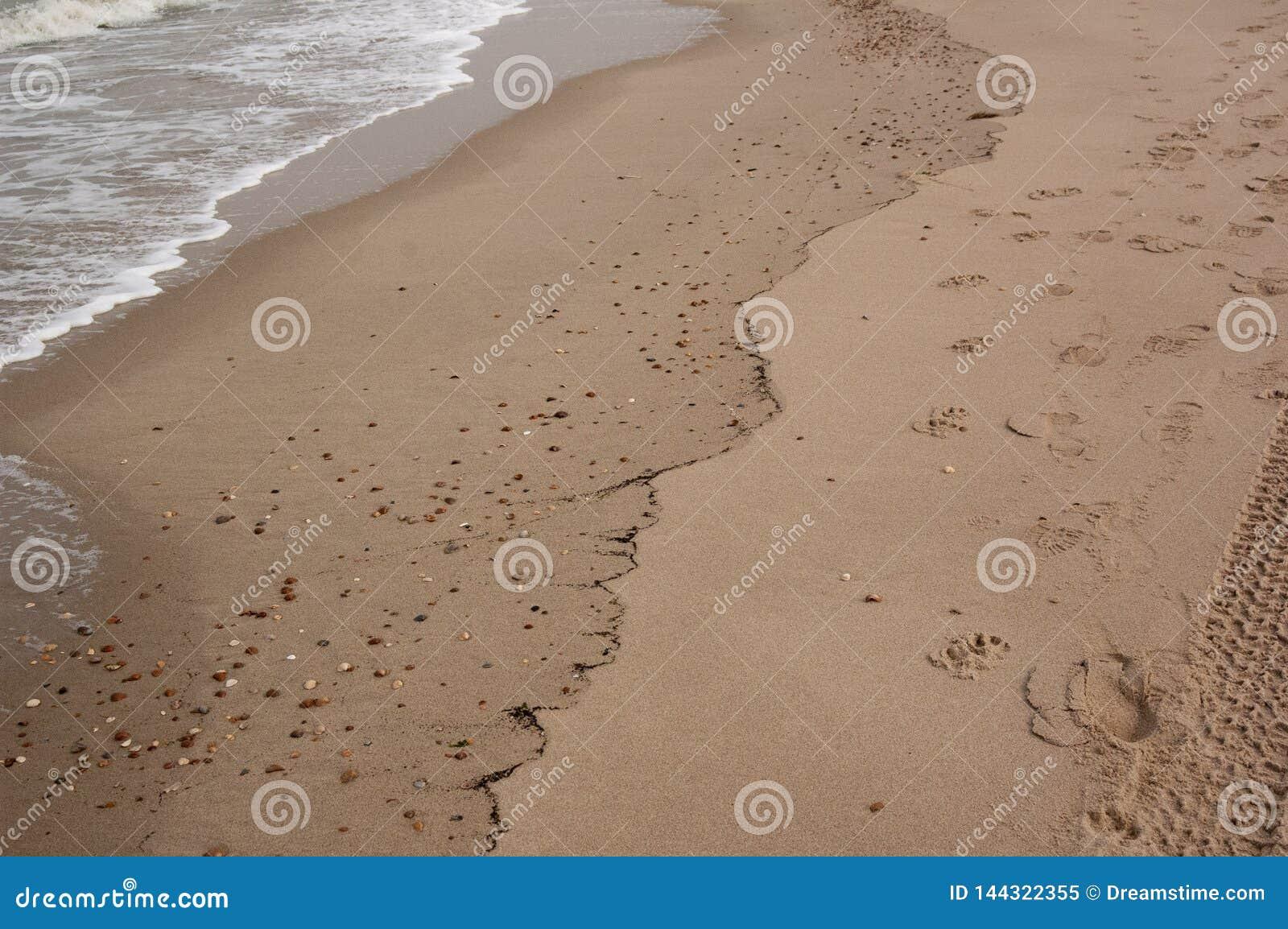 Мягкая красивая океанская волна на песчаном пляже (