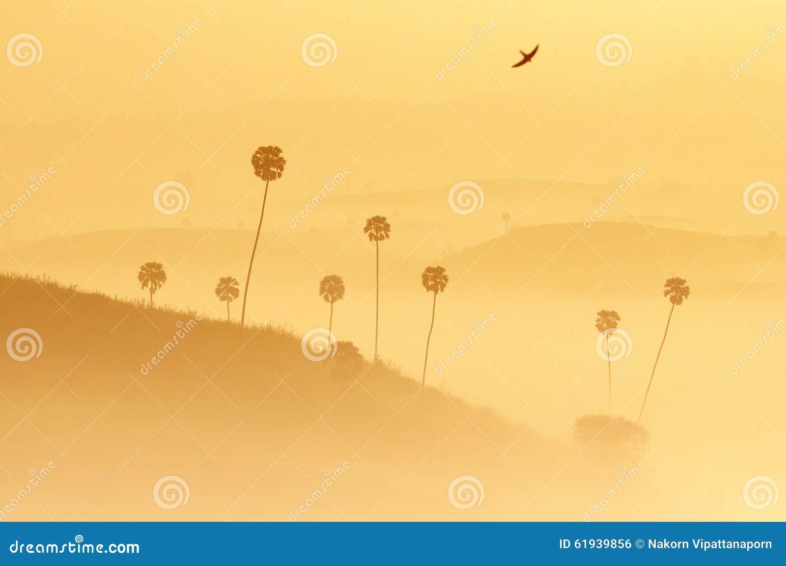 Мягкое изображение слоев ландшафта