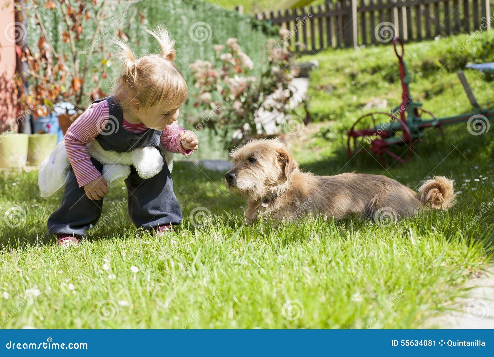 Младенец причаливая собаке