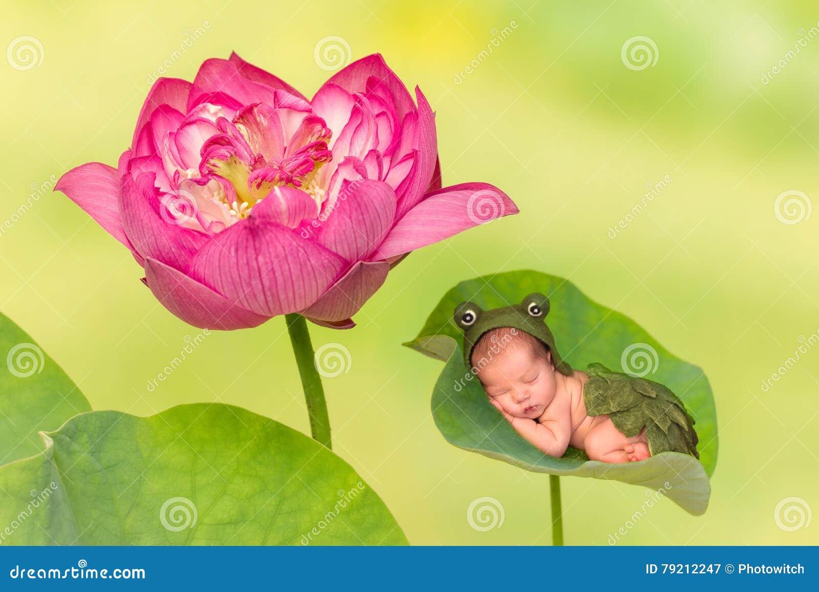 Младенец спать на лист лотоса