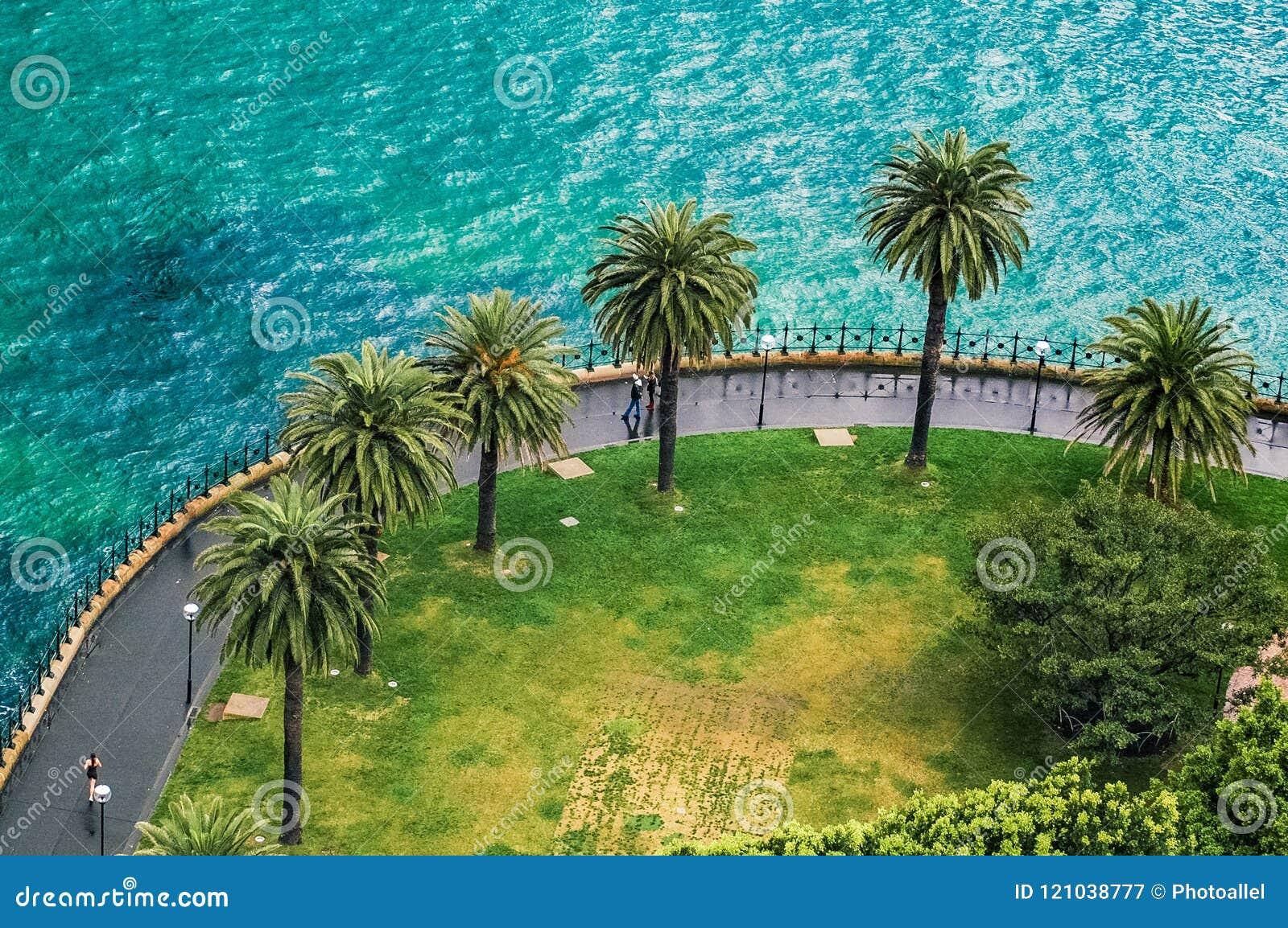 Набережная в Сиднее, NSW, центральном взгляде побережья и людях ладоней, идти и бежать на дождливом дне