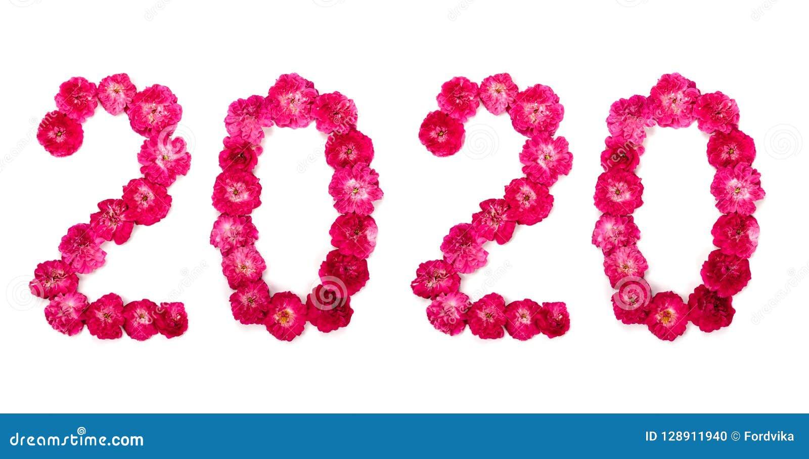Надпись 2020 от свежего пинка и красной розы цветет