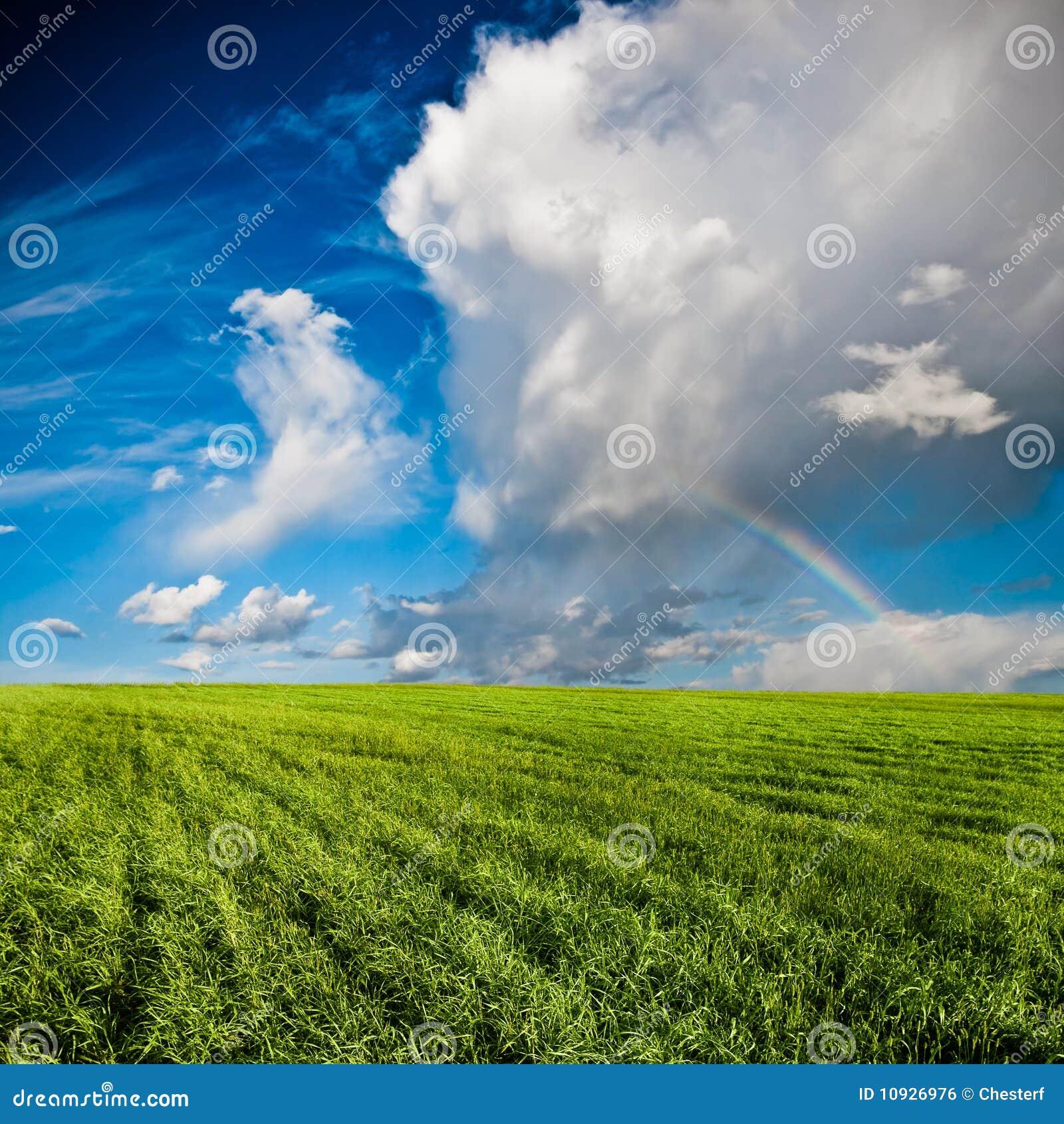 над голубыми небесами зеленого цвета поля