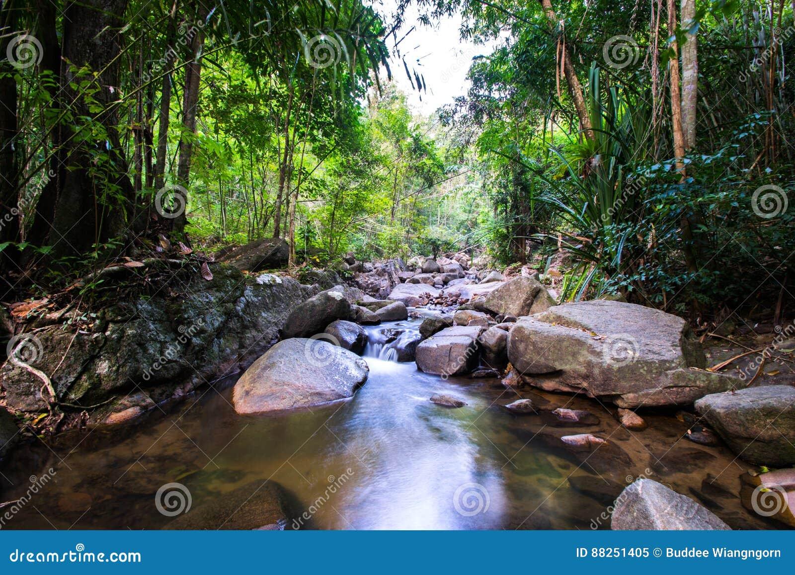 Назначения Рио Celeste перемещения предпосылки природы Рио CelesteCosta Rica назначений перемещения предпосылки природы Коста-Рик