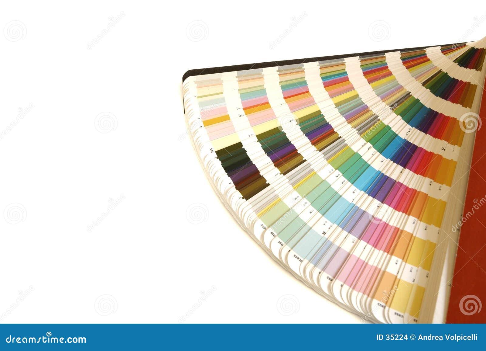 направляющий выступ цвета