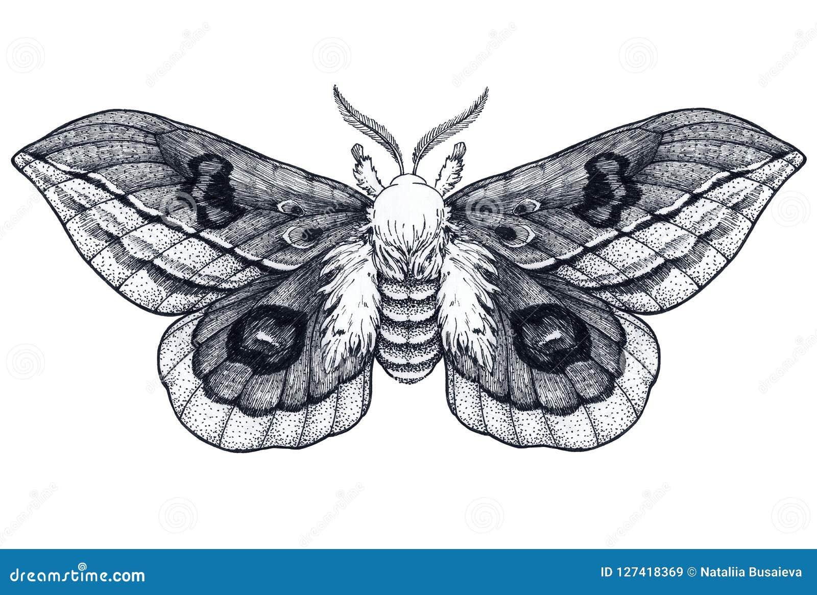 Нарисованная рукой татуировка бабочки Татуировка Dotwork красивейшая сумеречница Automeris Randa Мистический символ свободы, крас