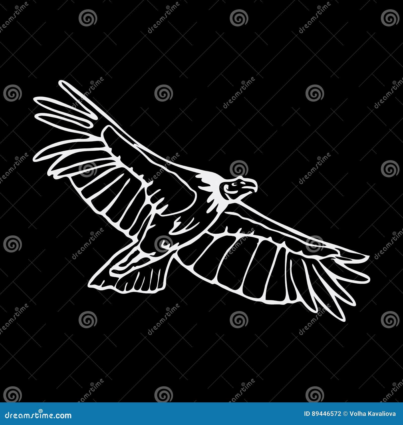 Нарисованные вручную графики карандаша, хищник, орел, скопа, сокол, хоук