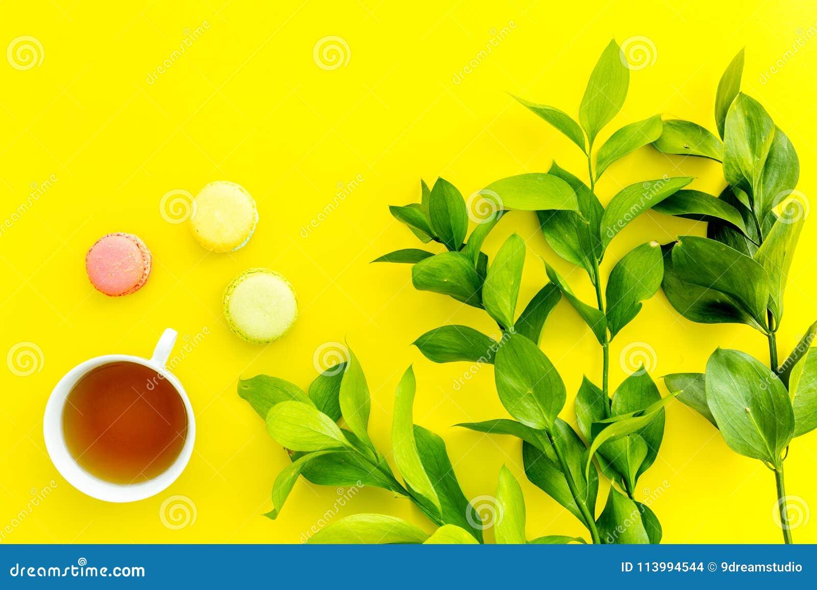Настроение лета, чаепитие лета Macarons чашки чаю и помадок приближают к растительности brignt на желтом экземпляре взгляд сверху