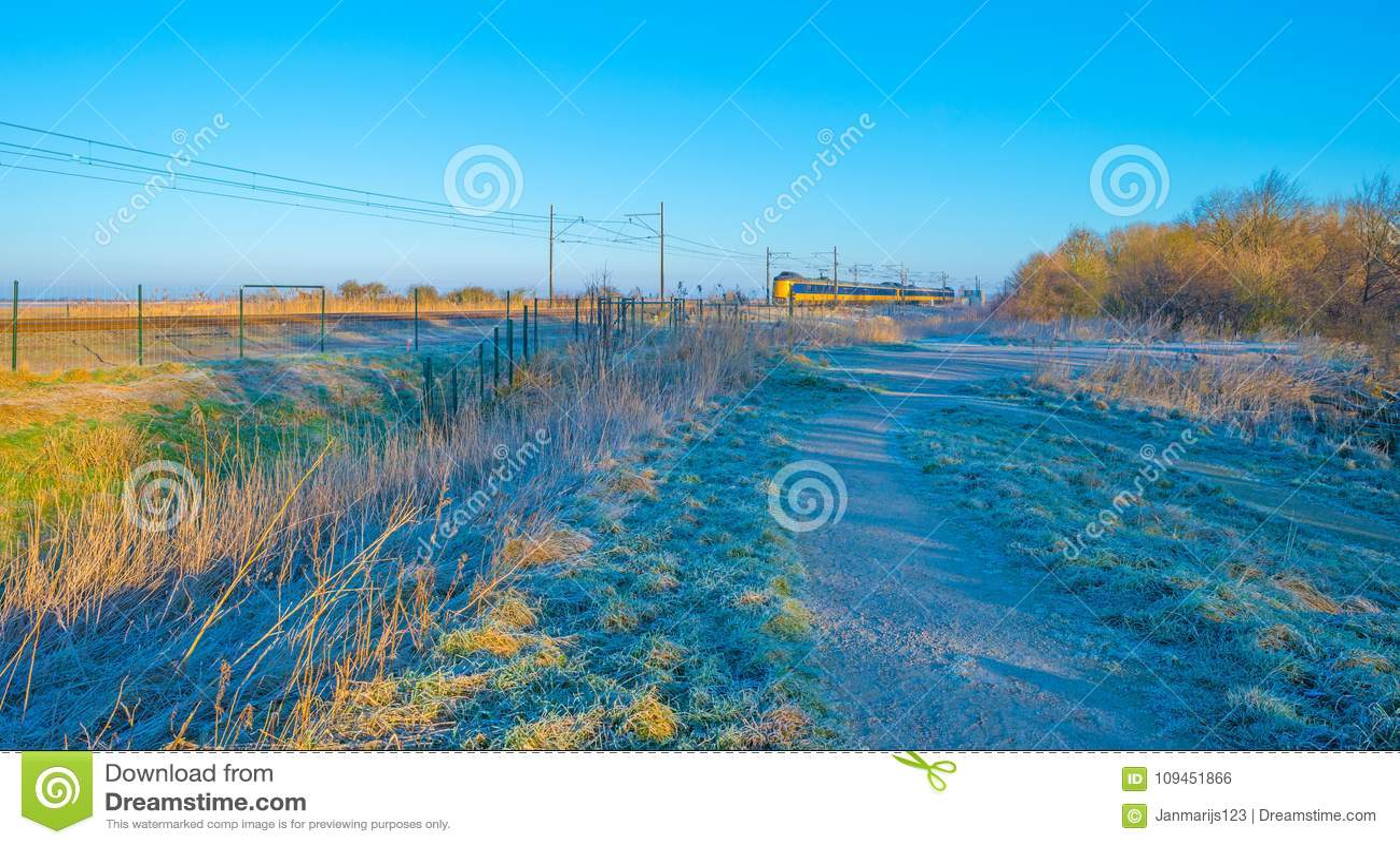 Натренируйте катание через замороженное поле в солнечном свете