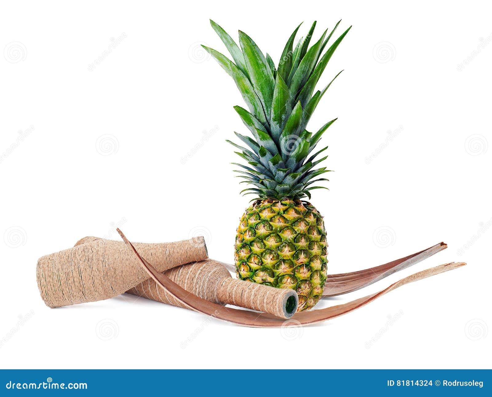 Натюрморт ананаса и украшенных бутылок изолированных на белизне
