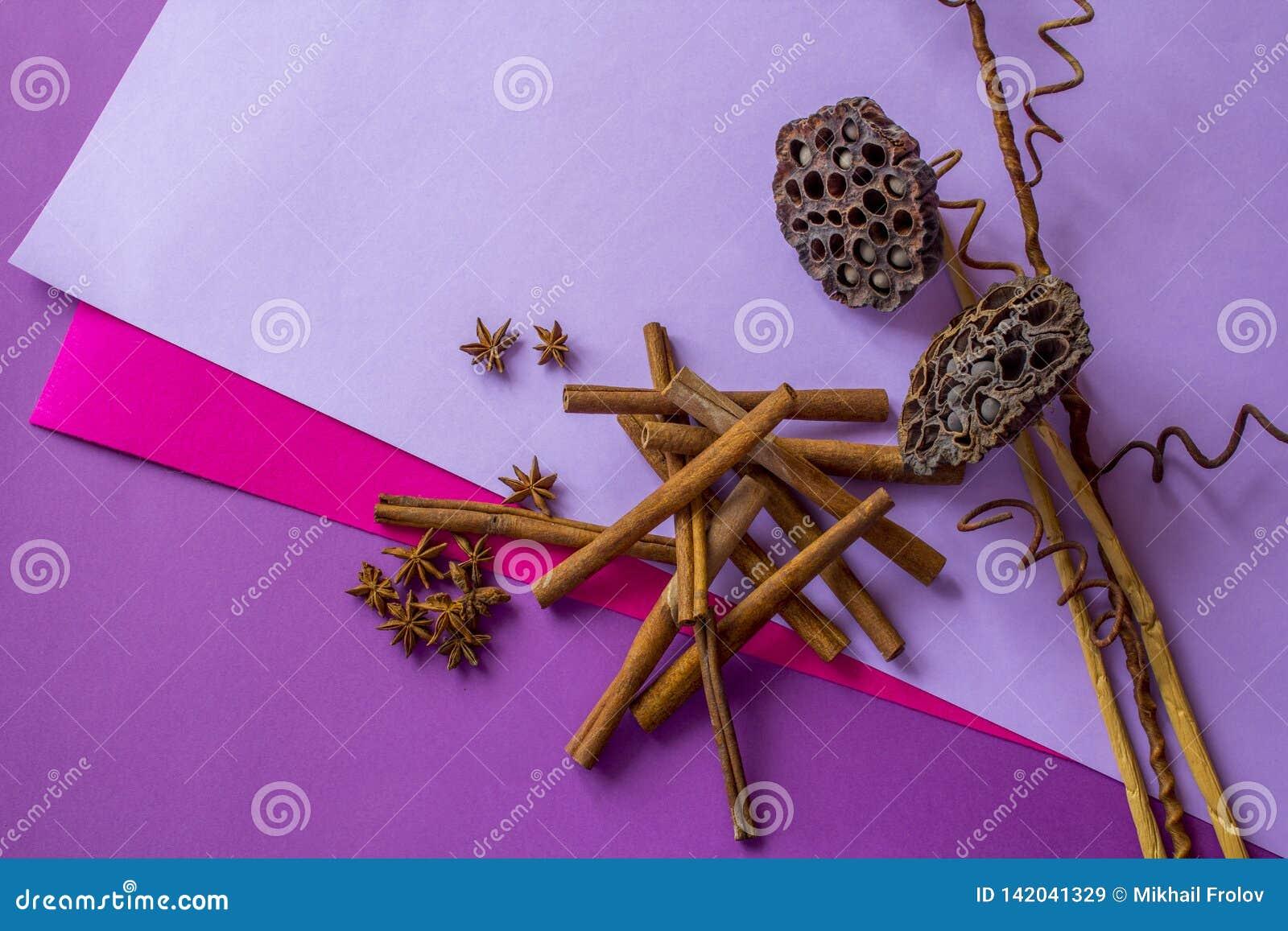 Натюрморт сухих лотоса, ручек циннамона и звезд анисовки лежа на покрашенной предпосылке