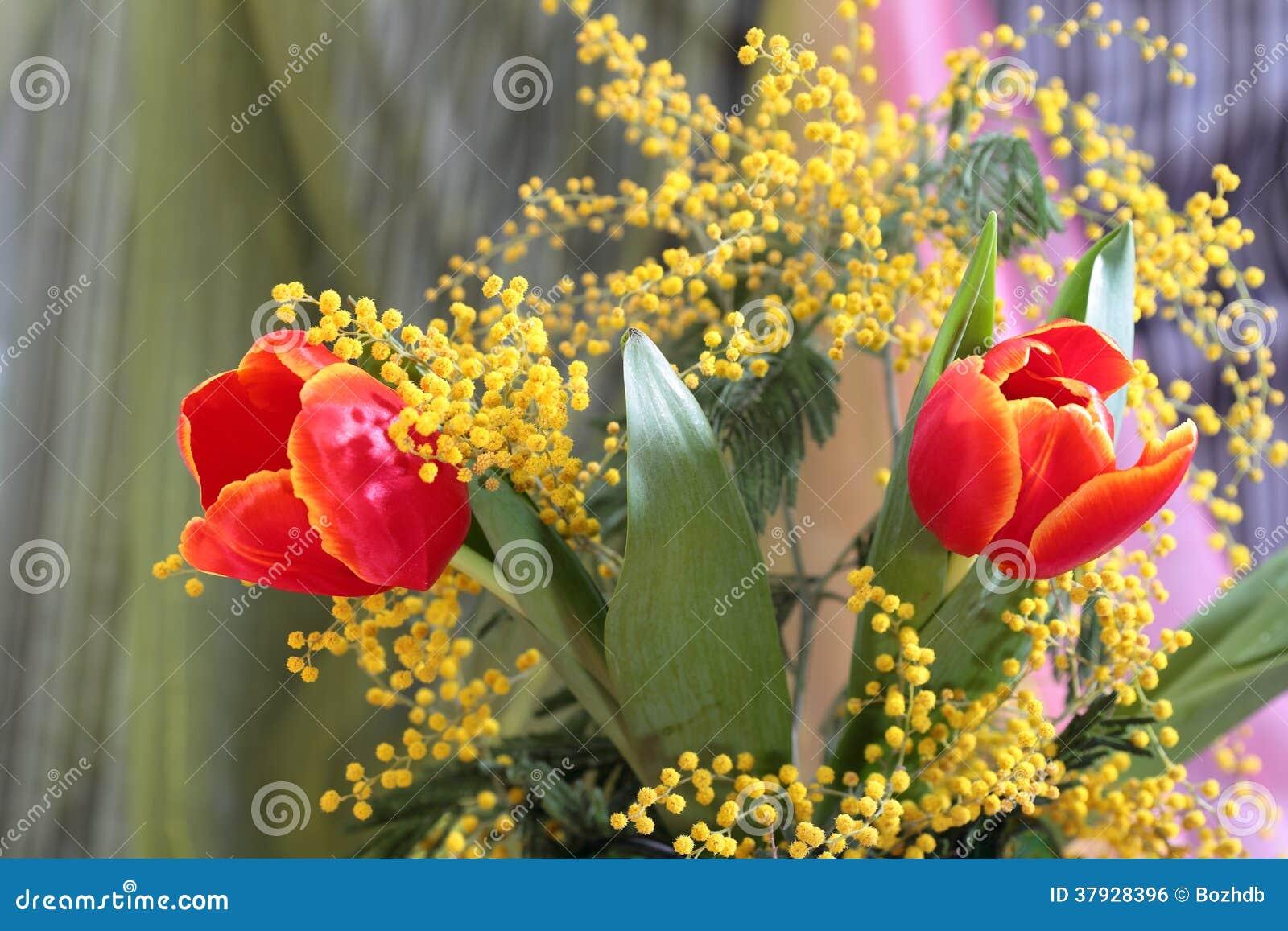Натюрморт с мимозой красных тюльпанов желтой