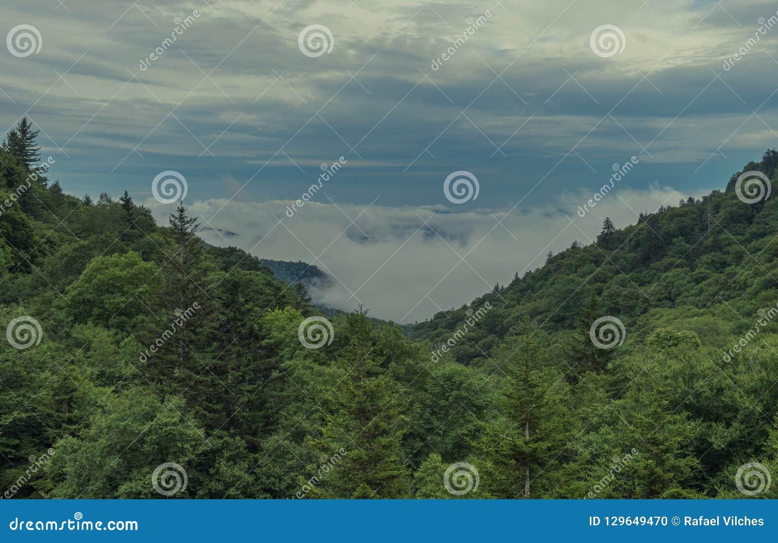 Национальный парк закоптелых гор ландшафта взгляда больший