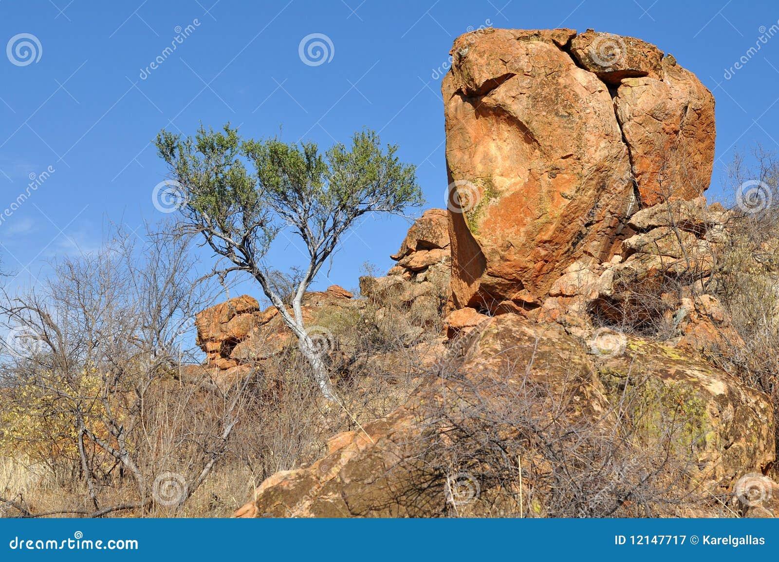 национальный парк mapungubwe ландшафта