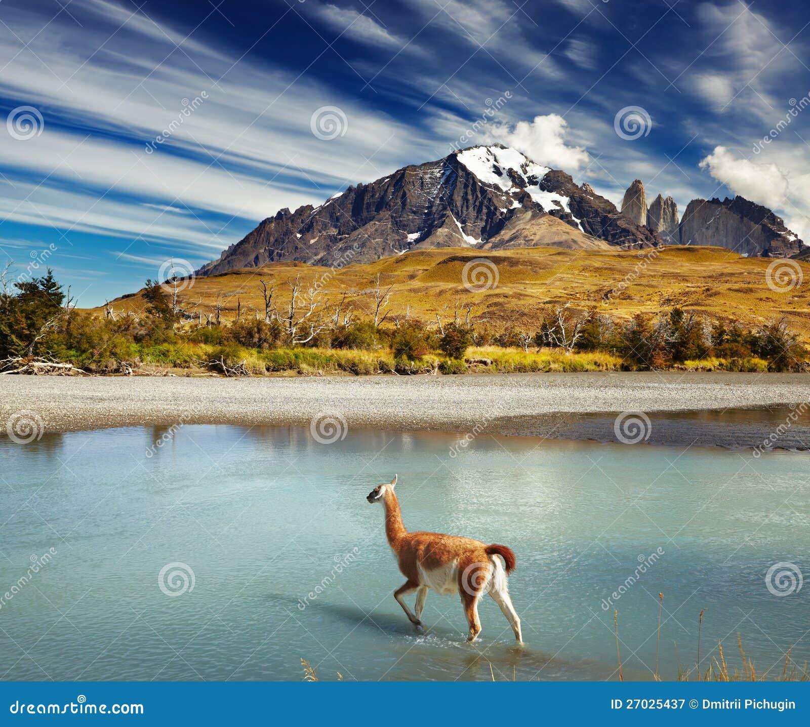 Национальный парк Torres del Paine, Чили