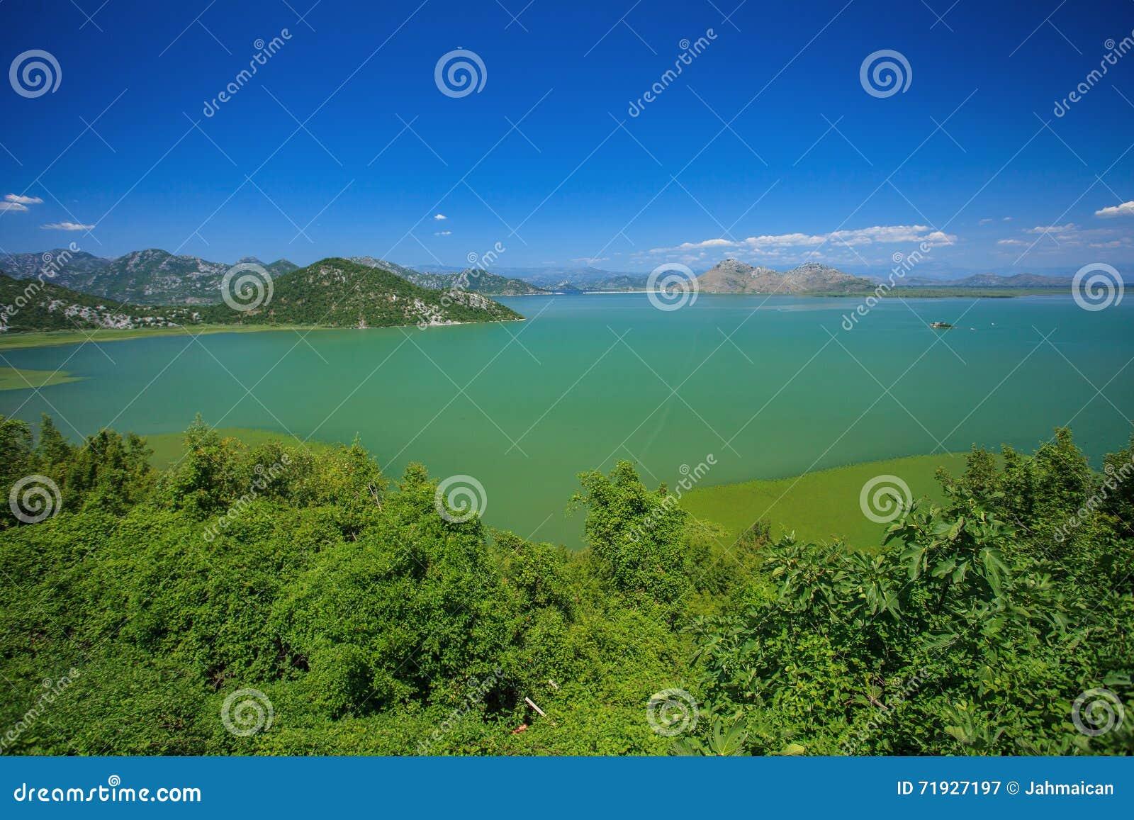 Национальный парк озера Skadar