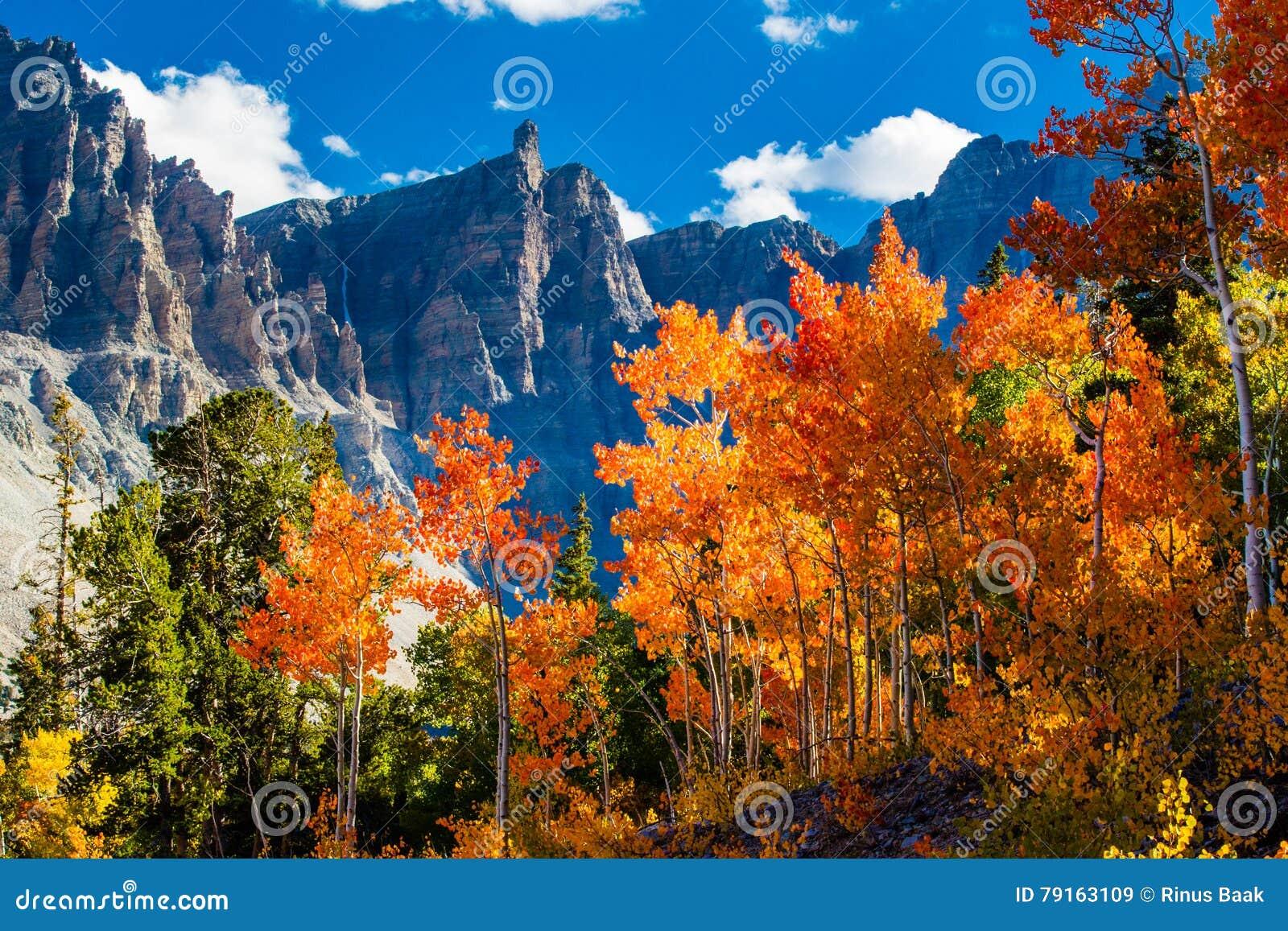 национальный парк тазика большой