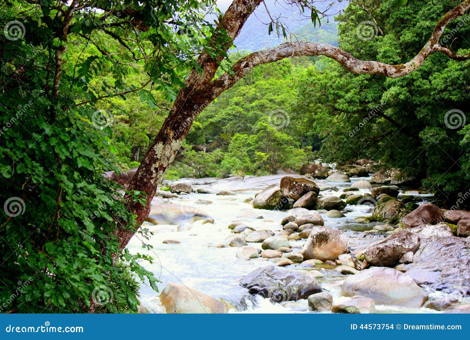 Национальный парк ущелья Mossman