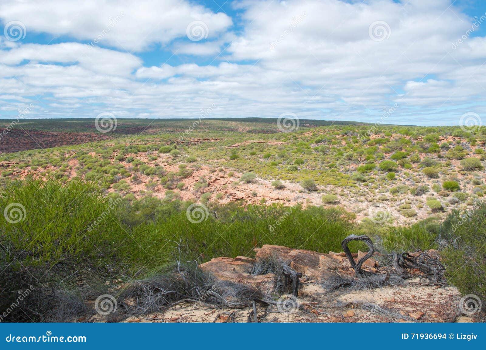 Национальный парк Kalbarri: Широко открытый