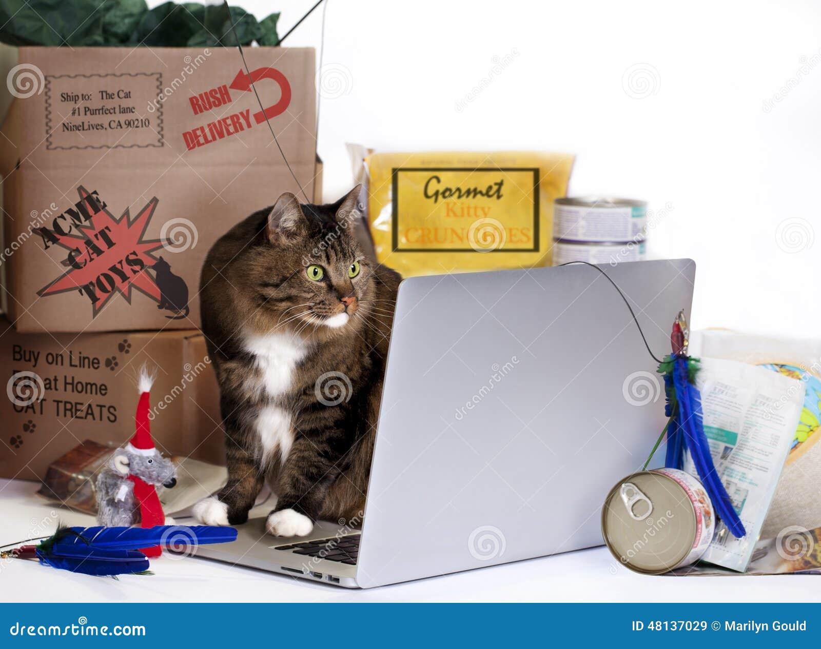 На-линия остервенение кота покупок