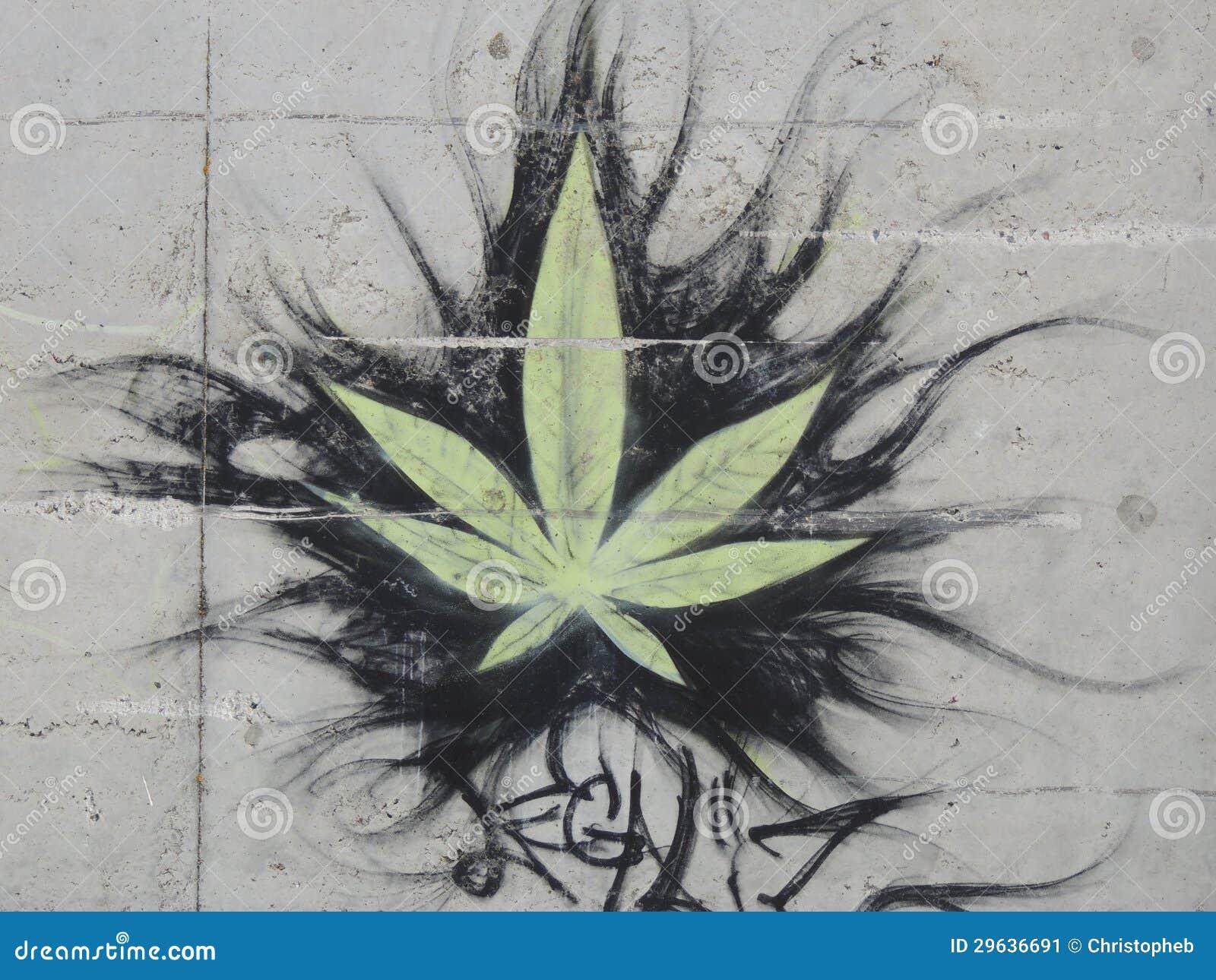 Марихуана на стене как сделать марихуану сильней