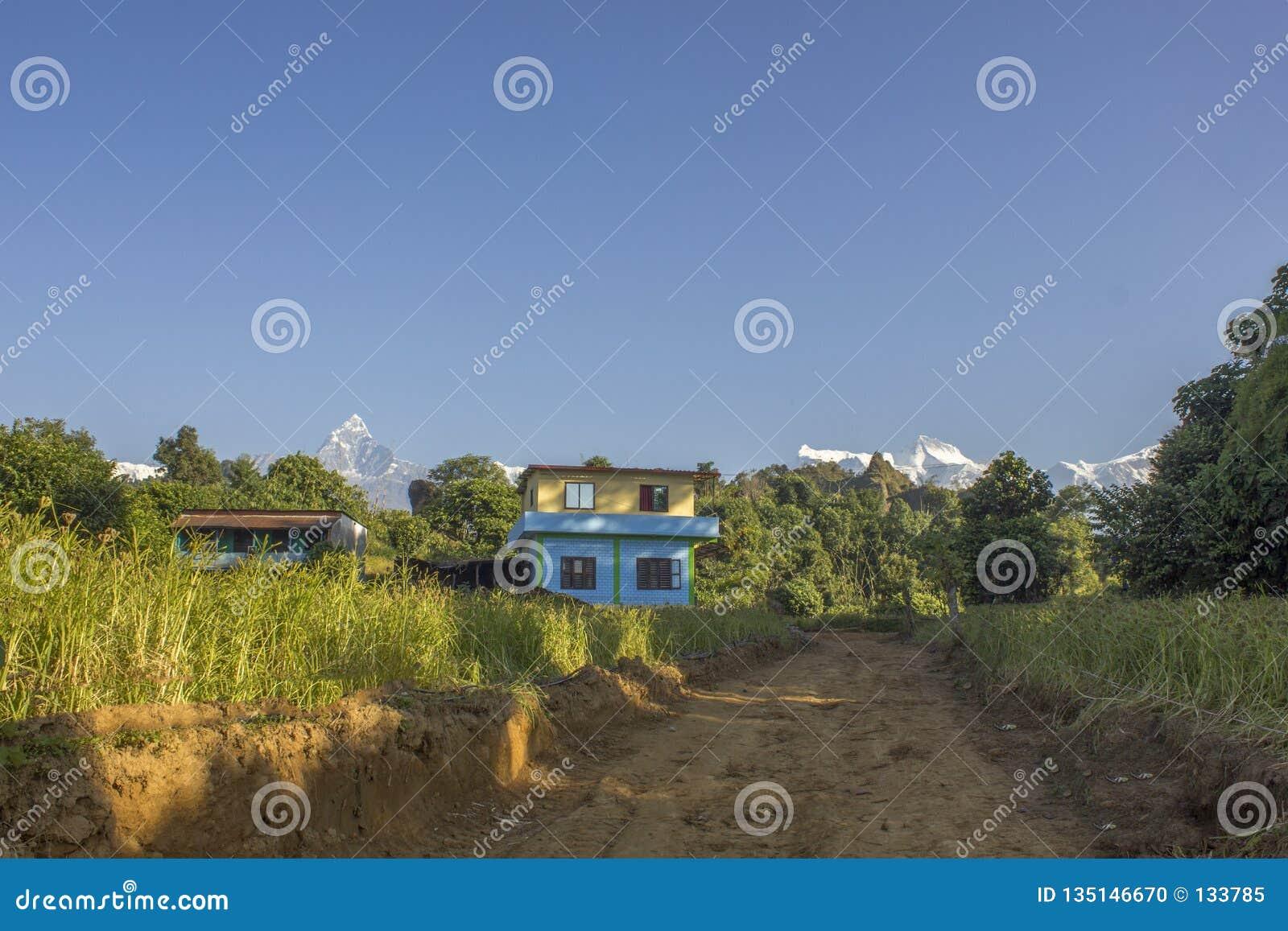 2 небольшого дома в сельской местности в зеленых полях риса против предпосылки леса и снег-покрытых гор и ясной сини