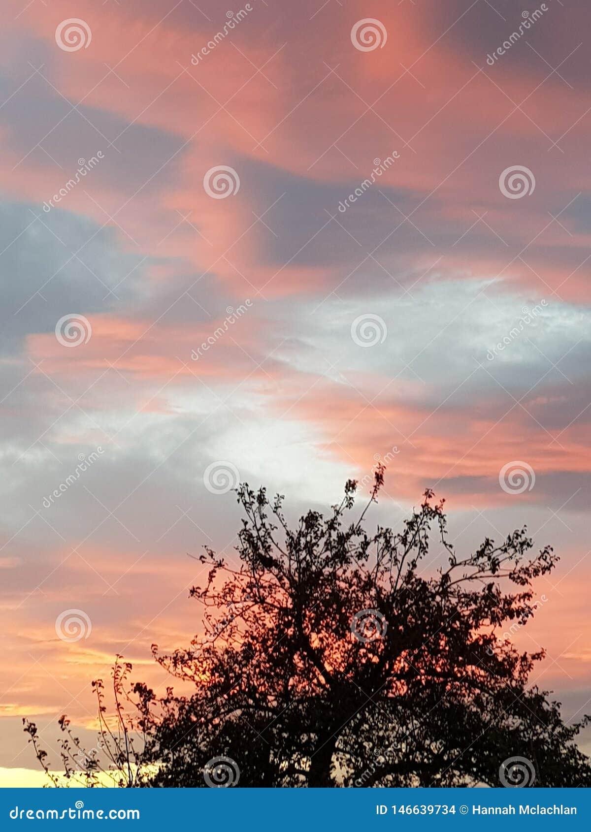 Небо захода солнца красивое красное
