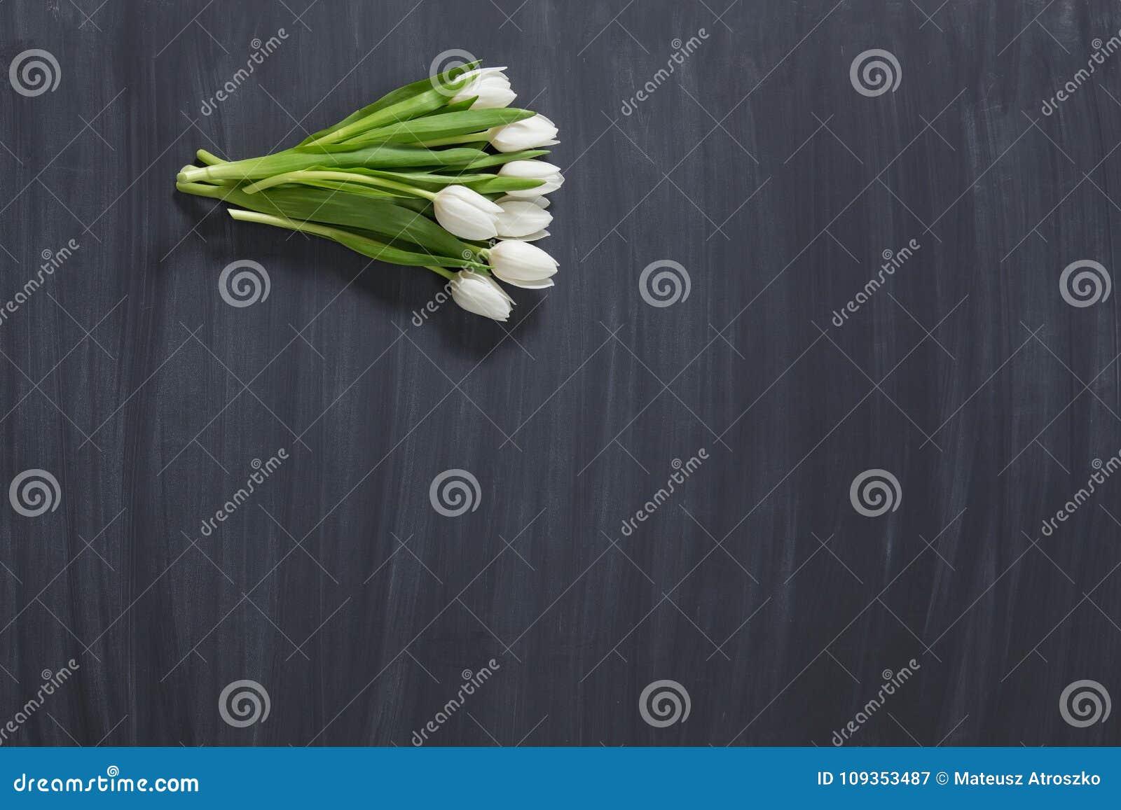 Немногие цветки тюльпанов на темной поверхности chalcboard Букет на предпосылке конспекта нерезкости с космосом экземпляра
