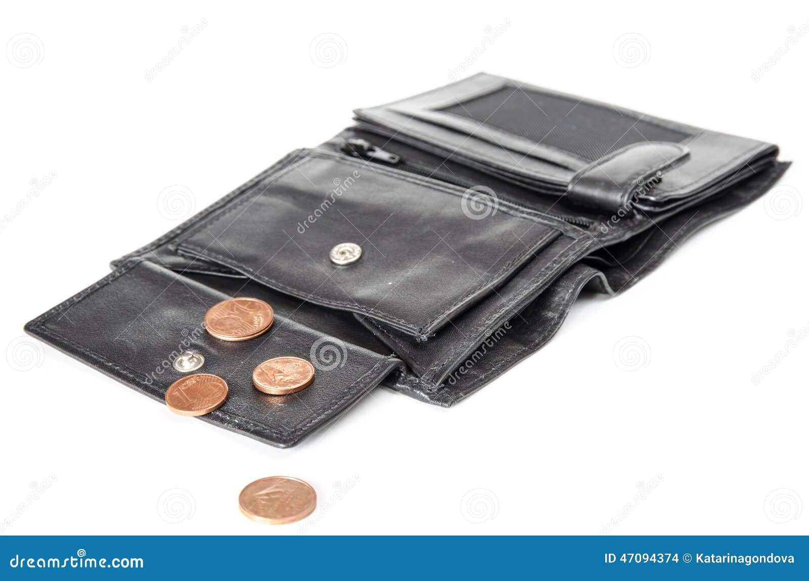 Немногий деньги в бумажнике