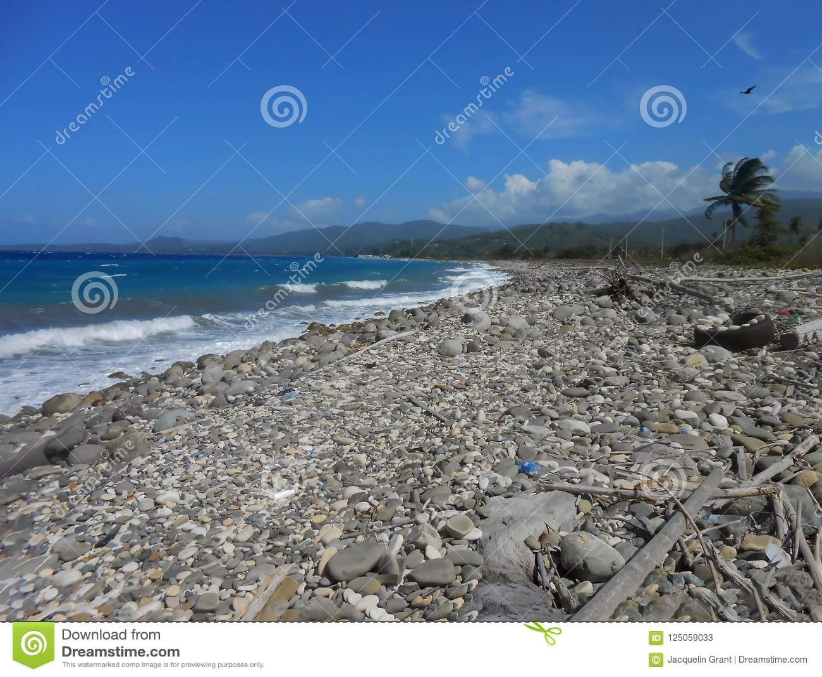 Нетронутый Uncared-для пляжа