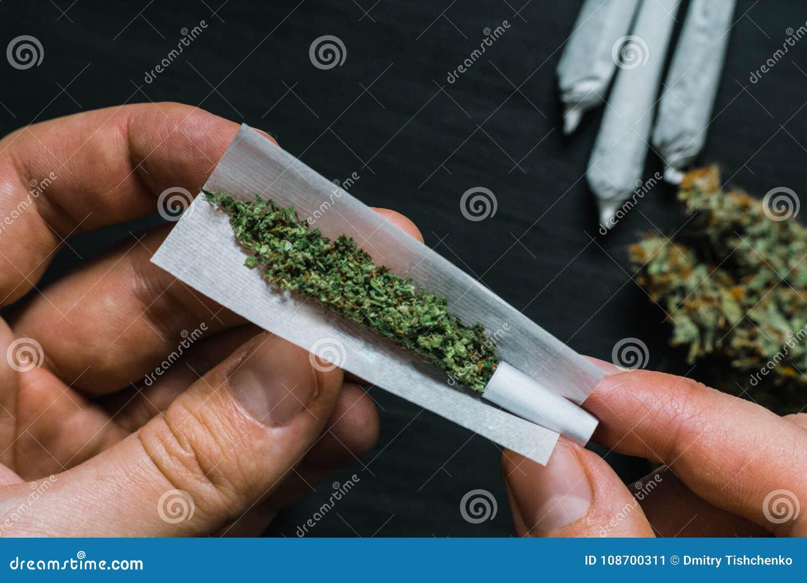 Курить коноплю перед зачатием обрезать листья конопли