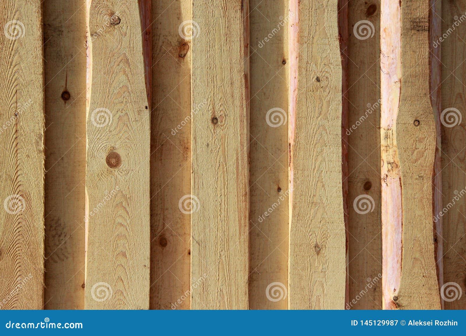 Текстура предпосылки Новая светлая деревянная стена сделанная доск
