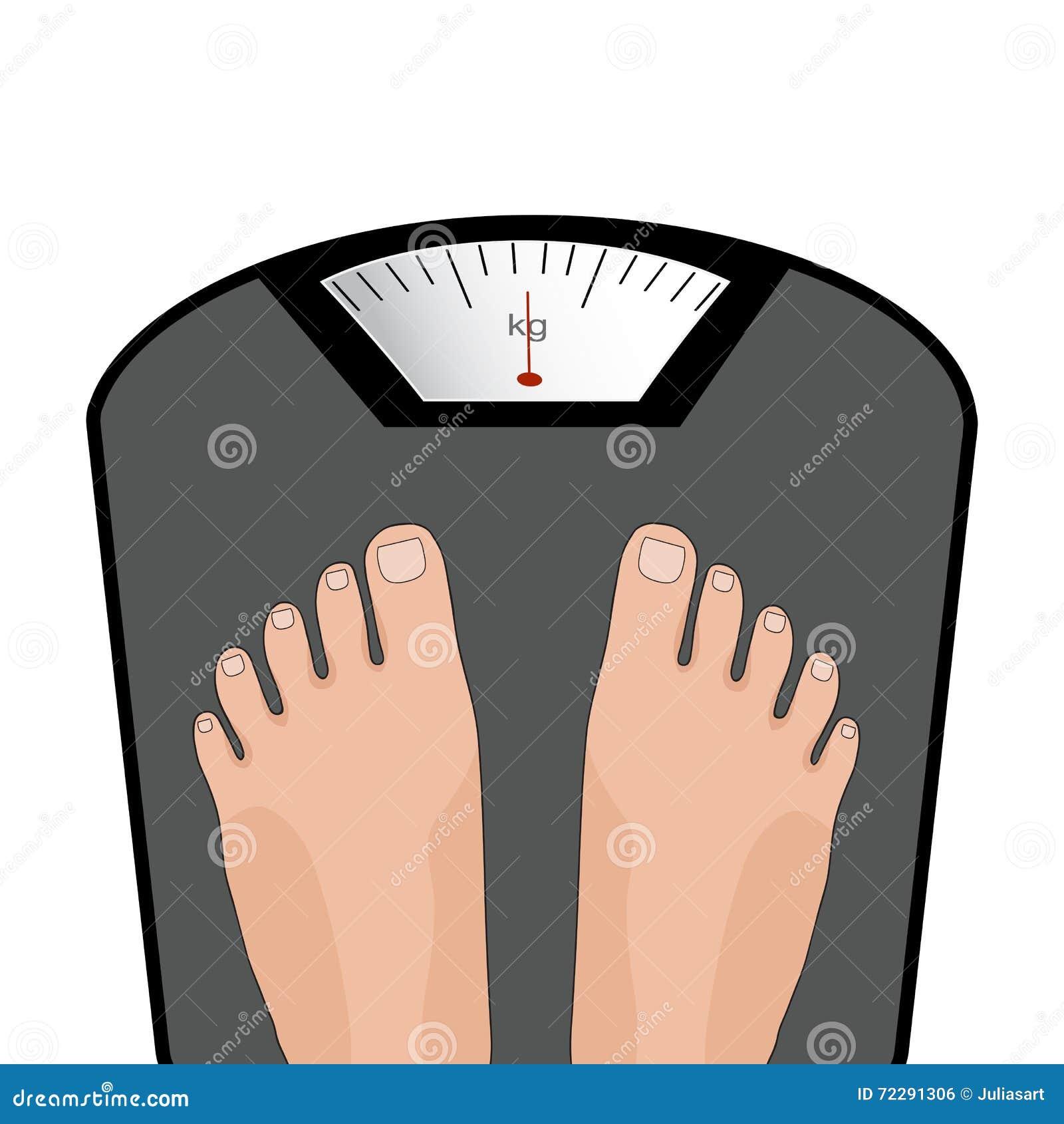 Download Ноги вектора на масштабе иллюстрация штока. иллюстрации насчитывающей lifestyle - 72291306