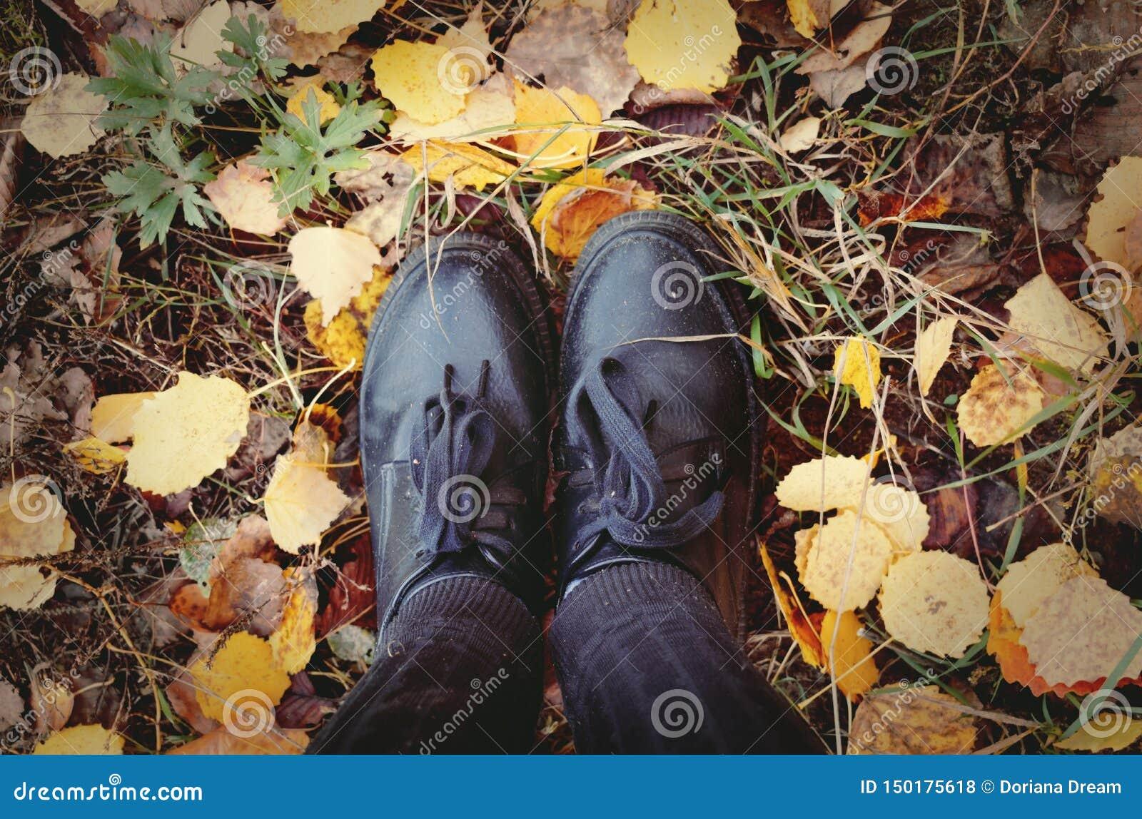 Ноги стоя на листьях осени