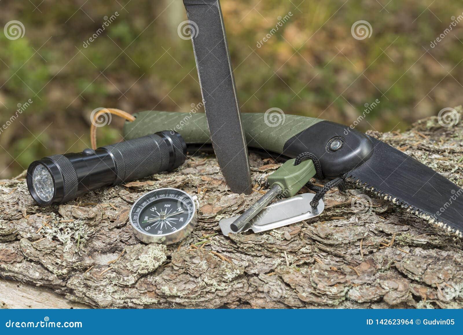 Нож и огниво на пне в лесе