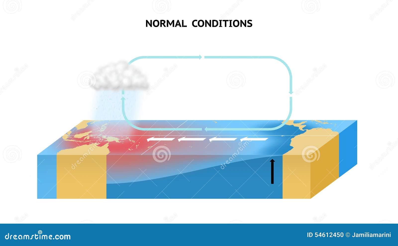Нормальные условия в экваториальном Тихом океане